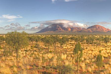 シンプソン砂漠、カタジュタ (オルガ)、オーストラリアの早い朝の光
