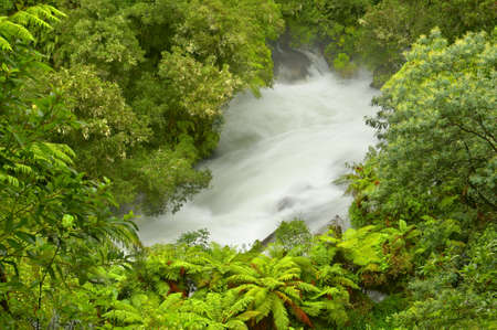 torrent: Okere Falls, a raging torrent in lush green jungle setting, New Zealand Stock Photo