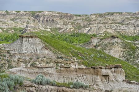 hoodoos: Hoodoos in Dinosaur Provincial Park, Alberta, Canada Stock Photo