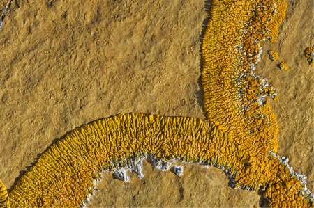 erode: Orange lichen on an ancient boulder, Red Rock Coulee, Alberta, Canada Stock Photo