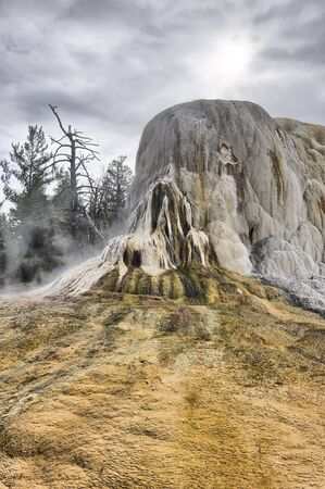 Mineral deposits, Mammoth Hot Springs, Yellowstone National Park, Wyoming, USA