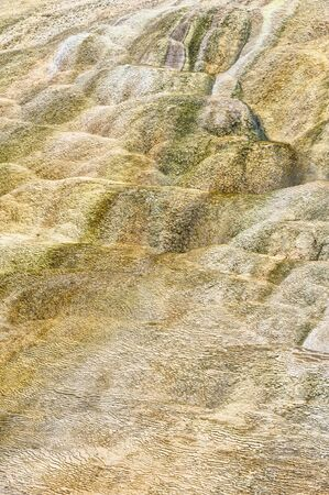 Colorful mineral deposits, Mammoth Hot Springs, Yellowstone National Park, Wyoming, USA