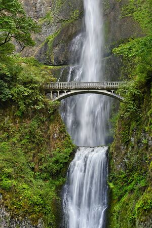 The waterfall consists of two parts. The upper part drops 165 meters lower in a small pond, where the water drops another 21 meters to drain into the Columbia river. This is the highest waterfall in O 스톡 콘텐츠