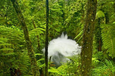 Tutea Falls going wild after a violent storm, New Zealand