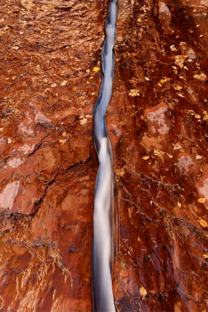 Water has cut a narrow channel in the red bedrock of the Left Fork North Creek, Zion National Park.