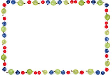 gooseberries: fruit frame - redcurrants, gooseberries and blueberries