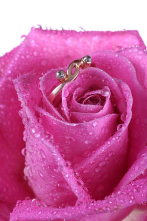 way to present a gold ring inside beautiful rose on Valentine Day. photo