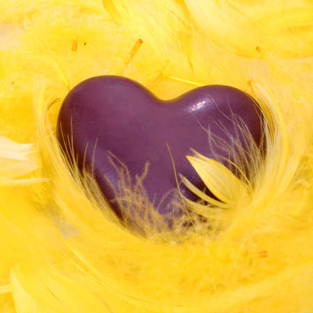 heart shape cookie in a yellow feather nestle photo