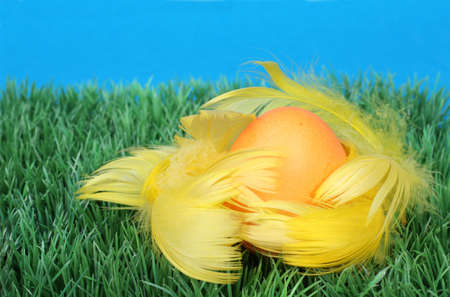 yellow Easter Egg in feather on green grass Stock Photo - 756020