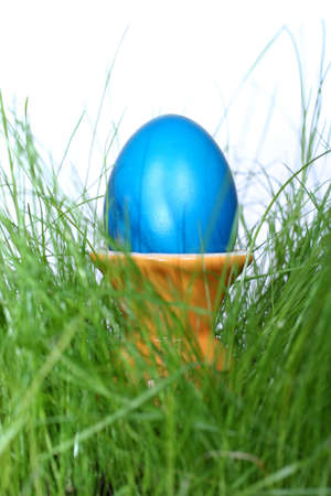 blue easter egg in egg-cup in green grass photo