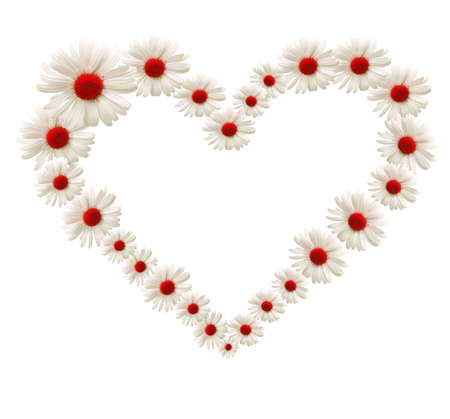 Big heart made of white flowers photo