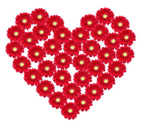 Big heart made of red flowers photo