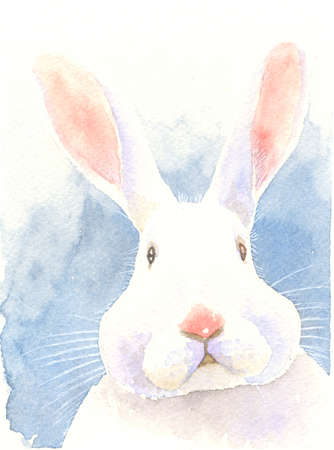illustrated: watercolor painting illustration puzzled bunny adorable rabbit