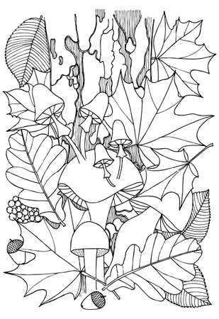 autumn leafs: Autumn leafs and mushrooms in black and white. Doodle art for coloring book