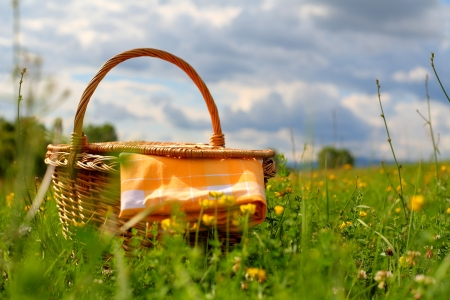 picnic cloth: Picnic basket on a meadow, summer day