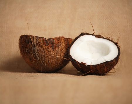 Coconut halves photo