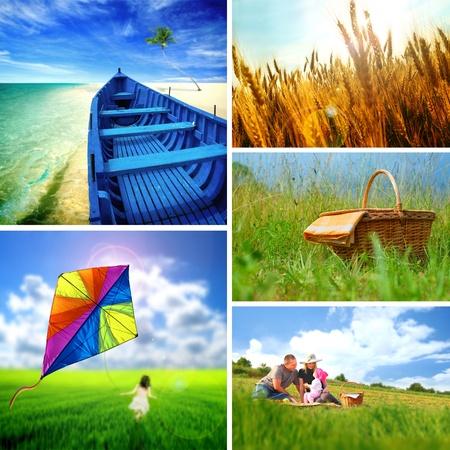 family picnic: Colección de imágenes del verano Foto de archivo