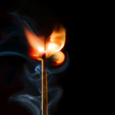 Matchstick rose isolated on black. Copy space photo