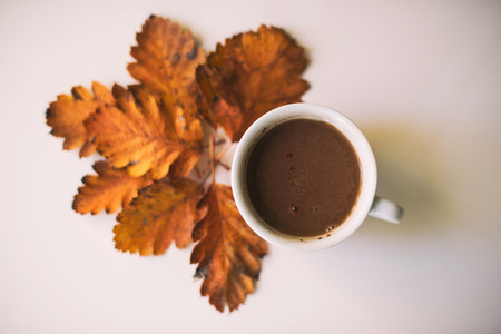 Coffee Cup Surrounded By Autumn Leaves On Table