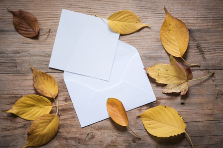 Fall leaves and white note or letter on rustic wood