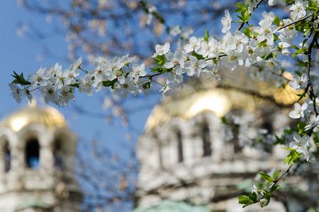 aleksander: Spring scenery of Aleksander Nevski cathedral in Sofia, Bulgaria Stock Photo