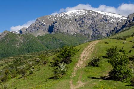ボテフ峰、スタラプラニナ山、ブルガリアの緑の森、観光パス