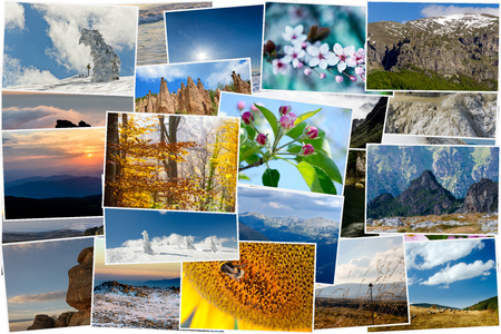 Collage of various nature photos in different seasons