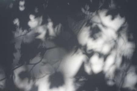 black shadows: shadows