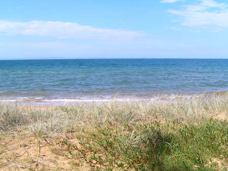A grassy duned beach at Redcliffe Australia. photo