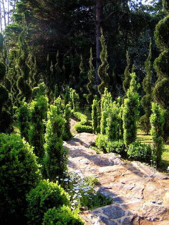 perfectionist: A path winding through perfectly sculpted hedges in a spiral form.