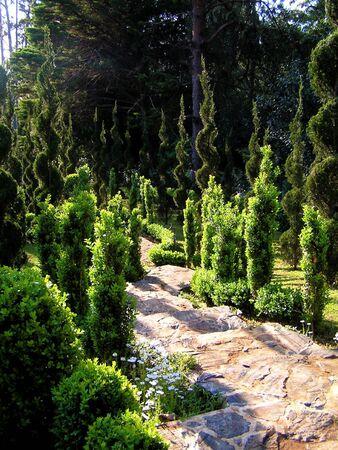 sculpted: Een pad wenteling via volkomen sculpted heggen in een spiraal formulier.