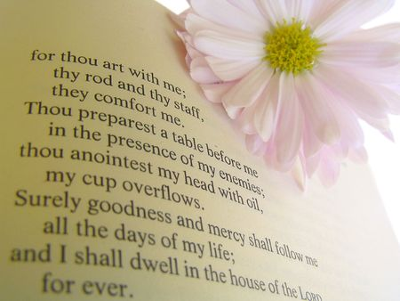 A well known psalm on a page in the Christian Bible. A light pink daisy is in the upper right corner.  photo
