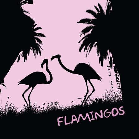 flamants  Vecteurs