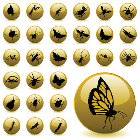 insects Stock Vector - 6170159