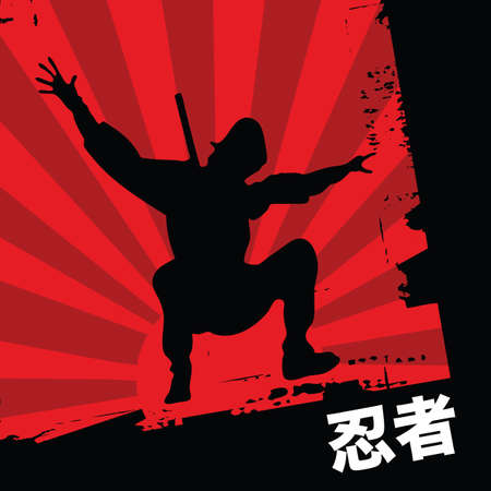 karate fighter: ninja