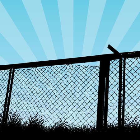 razor wire: wire fence