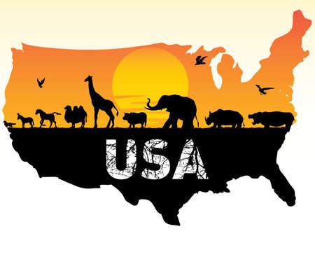 animals of the united states  イラスト・ベクター素材