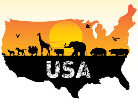 animals of the united states Vector