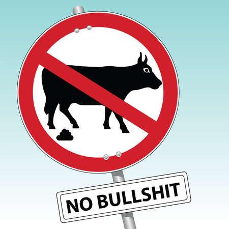 shit: no bullshit