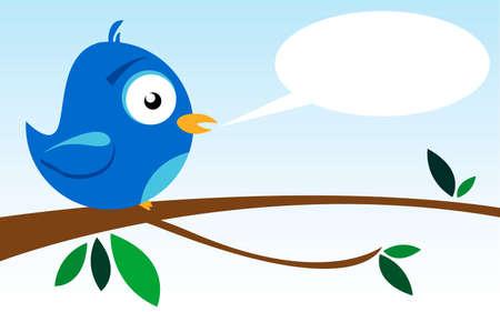 lonely bird: blue bird on a branch