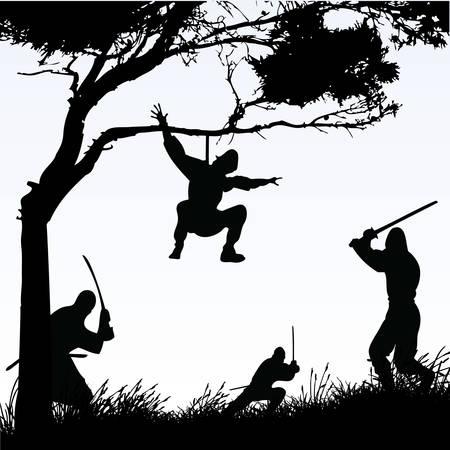 Ninjas Standard-Bild - 8838886