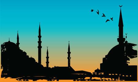 turkey istanbul: Istanbul Vettoriali