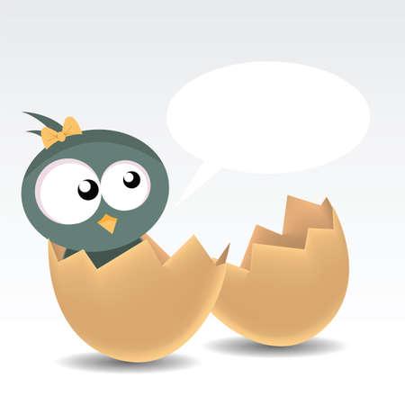赤ちゃんの鳥