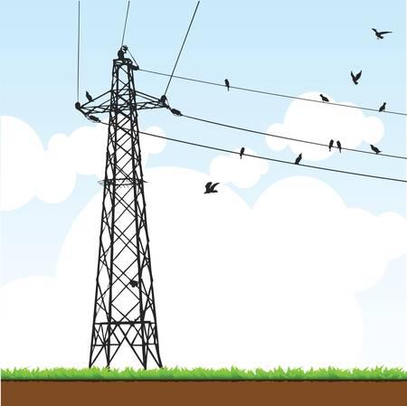 cable telefono: poste eléctrico Vectores