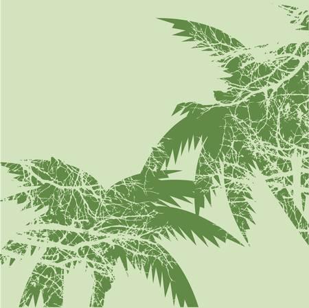 green plants: palms