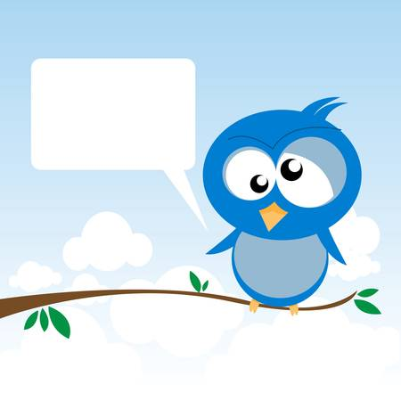 lonely bird: bird on a branch
