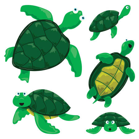 ensemble de vecteur de dessins animés de tortues