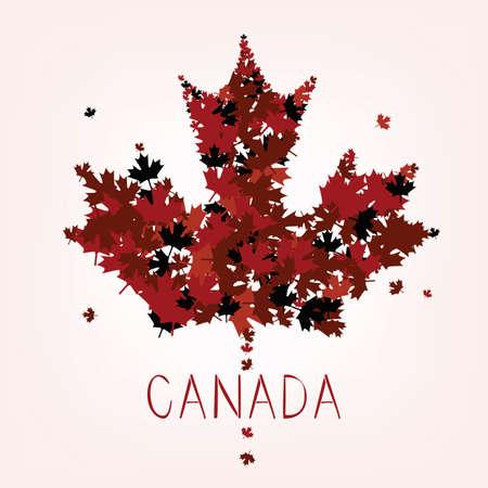 Maple Leafs - Symbol of Canada Illustration
