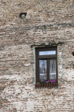 Window Фото со стока