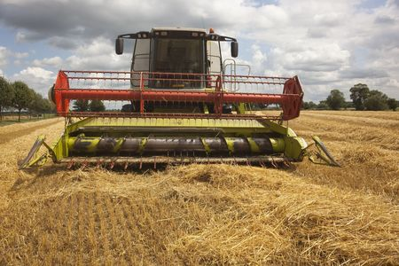 a combine harvester in a field of cut barley in summer photo